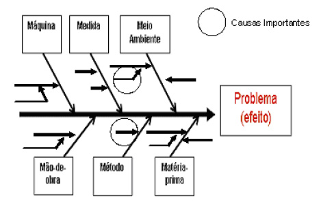 Causas Importantes - Diagrama de Causa e Efeito